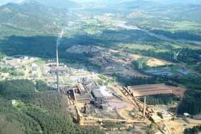 Dominicana mina