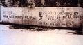 Desanm59 - Grafiti