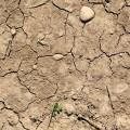 Severe-drought-740-120x120
