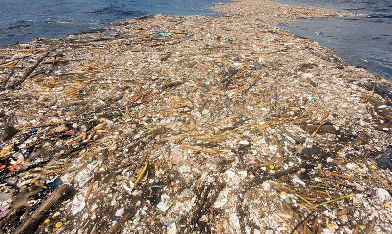 Caribbean sea of plastic fr