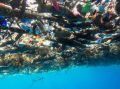 Caribbean sea of plastic ...