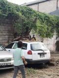 Latè-tranble 7.3 Venezwela dezas atè Trinidad-ek-Tobago