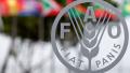 FAO Fiat Panis