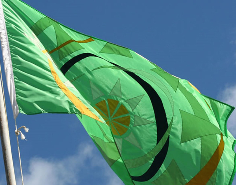 Oecs_flag_flying