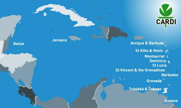 CARDI caribbeanmap