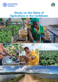 CDB Study on the State of Agriculture in the Caribbean