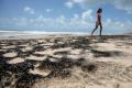 Brazil manchas do óleo na praia