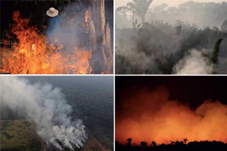 Amazonia 4 dife