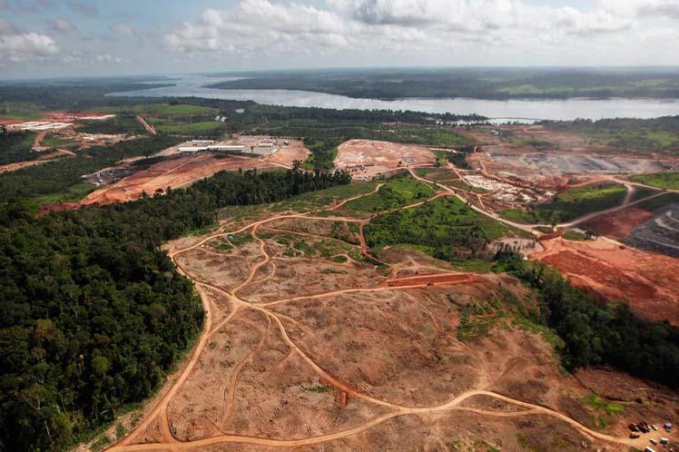 Amazonas-deforestacion