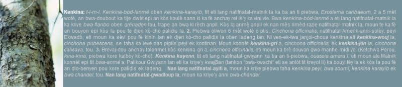 Kenkina bòd-lanmè - Exostema caribaeum - kòs la