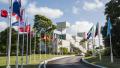 CDB flags